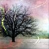 gen tree