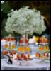 свадебный декор, artstatus, оформление выездной церемонии киев, декорирование свадеб киев