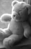 Profesor: nostalgic_teddy