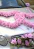 невеста, лимузин, жених, свадьба, на прокат