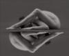 tihvinskay userpic