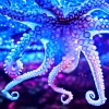 tentacled