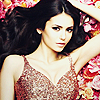 feels like i'm starting all over again: [celebs] nina - roses