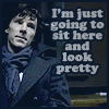 Sherlock - sit here and look pretty