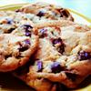 Food: Chocolate Chip Cookies