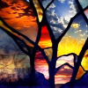 shadesoffree userpic