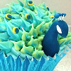 lauypauy: cupcake peacock