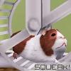 pixelcurious: squeak!