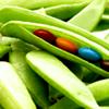 Alainia Kuroishi: sweet peas
