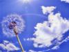 одуванчик на небе