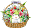 shaymin flower