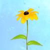 Shirebound: Flower daisy - annwyn55