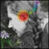 passion, flower, change, 1236bigcat, love