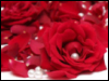pearl_and_rose userpic