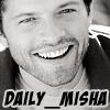 Daily Misha