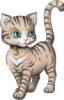 Кошка Камея