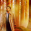 janice_lester: Cas in forest SPN