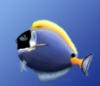 aquarianfishes userpic