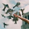 air_we_inspire