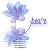 silver_chipmunk: peace