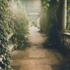 mystery, garden, nature