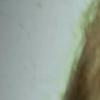 alale userpic