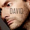 David text