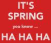Spring hahaha