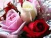 mendi1209 userpic