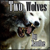 ncis title two wolves