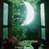 moon in the window