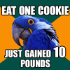 (parrot) just one bite