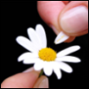 life_as_life userpic