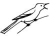 maorina userpic