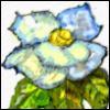 flrob_53sr userpic