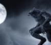 werewolf_junsui userpic