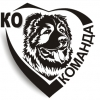 ko-komanda