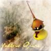 Yellow Opera