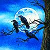 ravenskyewalker
