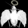 scandalousroach userpic