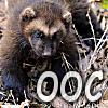 Daken (Akihiro): OOC- Wolverine
