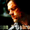 harrigan: spn_littlebro