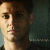 Jensen: Freebird