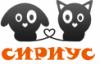 """Приют для бездомных животных """"Сириус"""" posting in всё о кошках"""