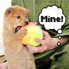 Puppy - Mine!