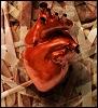 misc / heart on my sleeve