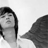 Minho-Wings