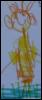 ptitselov