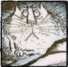 кот нищастный