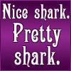 B5: shark